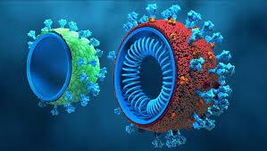 Çiftlik Hayvanlarında Helmint Aşıları