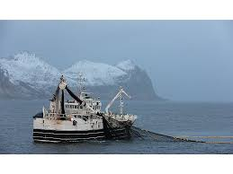 Norveç Denizi ve Balıkçılık